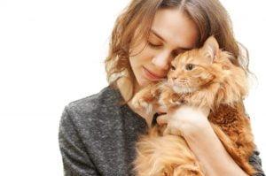 Como demostrarle cariño a su gatito