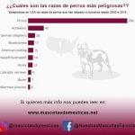 #Infografía Estadísticas de razas de perros más peligrosas